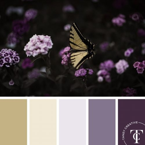 Butterfly Purple Color Palette by Taney Creative@1x