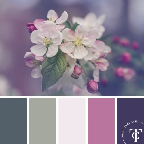 Spring Blooms Color Palette by Taney Creative@1x