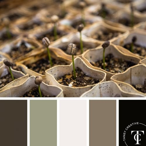 Spring Garden Color Palette by Taney Creative@1x