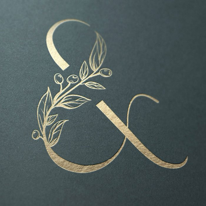 ampersand logo photographer website design olive pearl photography